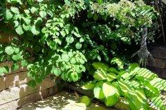 gruene_oase1.jpg